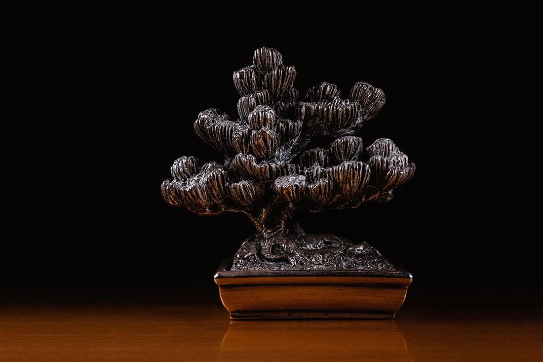 Silver bonsai by Tiziano L. U. Caviglia