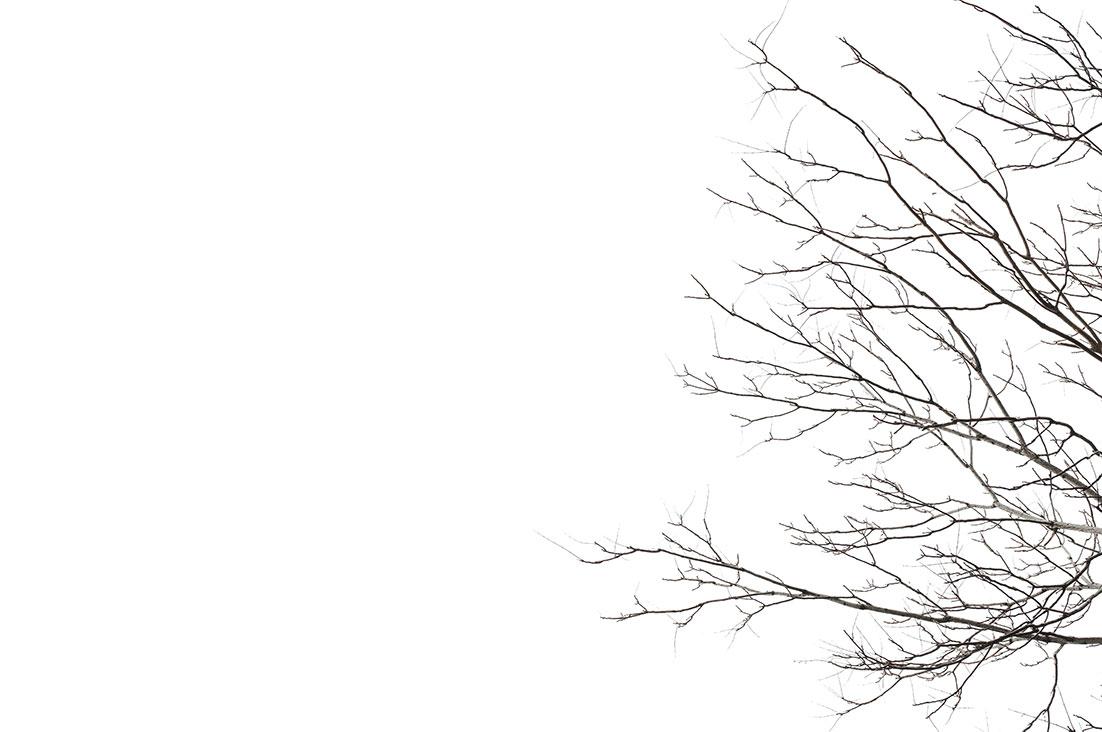 Minimal Winter by Tiziano L. U. Caviglia