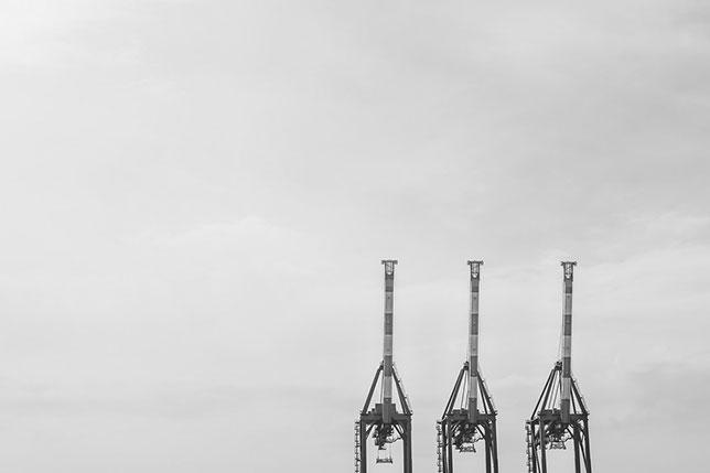 Gru nel porto di Genova